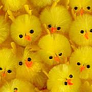 Crowded Chicks Art Print