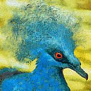Crowned Pigeon Art Print