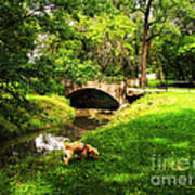 Cruz At Deer Creek Bridge Dwight Il Art Print