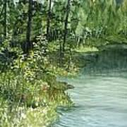 Crystal Bog Art Print