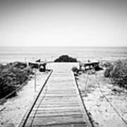 Crystal Cove Overlook Black And White Picture Art Print