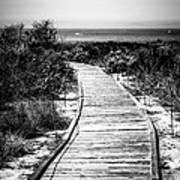 Crystal Cove Wooden Walkway In Black And White Art Print