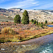Crystal Creek In The Gros Ventre Art Print