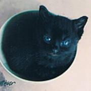 Cup O'kitty Art Print
