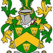 Curdy Coat Of Arms Irish Art Print