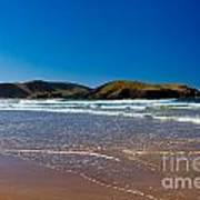 Curio Bay On South Coast Of New Zealand South Island Art Print