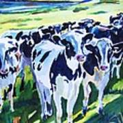 Curiosity Cows Original Sold Prints Available Art Print