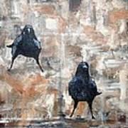 Curious Crows  Art Print