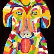Curly Colorful Retriever Art Print
