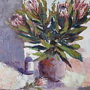 Cut Proteas Art Print