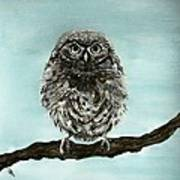 Cute Baby Owl Art Print