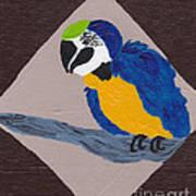 Cute Little Macaw  Art Print