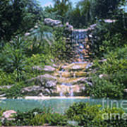 Cypress Garden Waterfalls Art Print