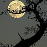 Cypress Moon Art Print
