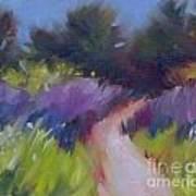 Cypress Passage Art Print