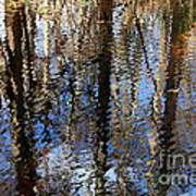 Cypress Reflection Nature Abstract Art Print by Carol Groenen