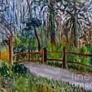 Cypress Trail At Loxahatchee Art Print