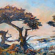 Cypress Tree Coast Art Print