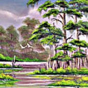 Cypress Trees-wakulla River Florida Art Print