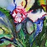 Daffodil 6 Art Print