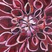 Dahlia - Closeup 2 Art Print
