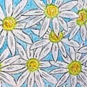 Daisies Daisies Art Print