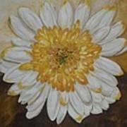 Daisy-2 Art Print