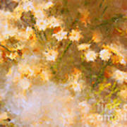 Daisy A Day 21 Art Print by Julie Lueders