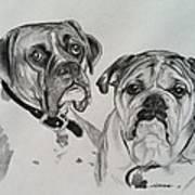 Daisy And Duke Art Print