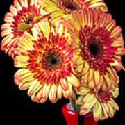 Daisy Bouquet Art Print