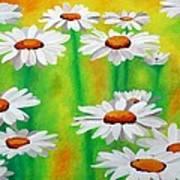 Daisy Day Art Print