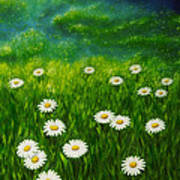 Daisy Meadow Art Print