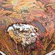 Damaged Upholstery Art Print