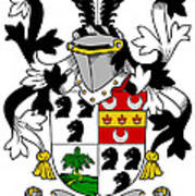 Dancer Coat Of Arms Irish Art Print