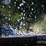 Dancing Droplets Art Print