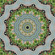Dancing Mandevilla Blossom Kaleidoscope Art Print