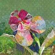 Dancing Orchid IIi Art Print