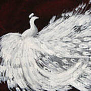 Dancing Peacock Burgundy Art Print