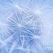 Dandelion Atmosphere Art Print