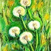 Dandelions Art Print by Zaira Dzhaubaeva