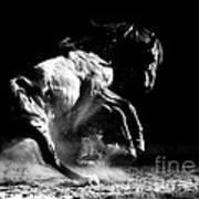 Dark Dance Art Print