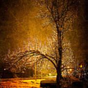 Dark Icy Night Art Print by Sofia Walker