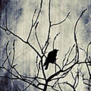 Crow In Dark Lights Art Print