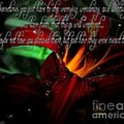 Dark Red Day Lily And Quote Art Print