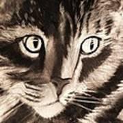 Darling Cat Art Print
