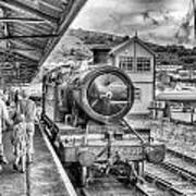 Dart Valley Railway Art Print