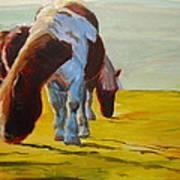 Dartmoor Ponies Art Print