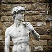 David Statue Art Print
