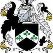 Davis Coat Of Arms Kildare Ireland Art Print