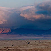 Dawn In Ngorongoro Crater Art Print